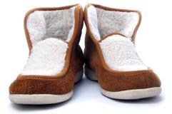 白俄罗斯绝热的拖鞋冬天 免版税库存照片