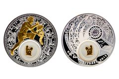 白俄罗斯银币占星术宝瓶星座 免版税库存图片
