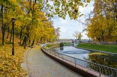 白俄罗斯,戈梅利,天鹅池塘在秋天公园 免版税库存照片