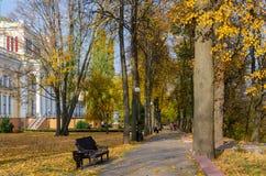白俄罗斯,戈梅利,胡同在秋天公园 库存图片