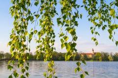 白俄罗斯, Nesvizhsky城堡 免版税库存图片