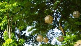 白光圆装饰品装饰在树、绿色和植物中有空间的拷贝的 库存图片