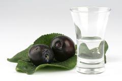 白兰地酒玻璃李子 库存图片