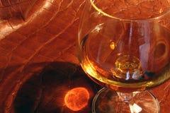 白兰地酒 免版税库存图片