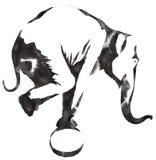 黑白单色绘画用水和墨水得出大象例证 图库摄影