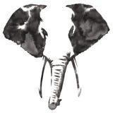 黑白单色绘画用水和墨水得出大象例证 免版税库存照片