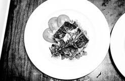 黑白变黑的鱼 图库摄影