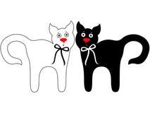 黑白可笑的猫 免版税库存图片