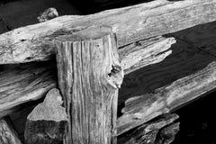 黑白土气的篱芭 免版税库存图片