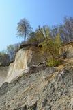 白垩岩石吕根岛海岛(德国,梅克伦堡福尔波门) 免版税库存照片
