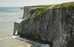 白垩峭壁,在Bempton在约克夏,英国 图库摄影