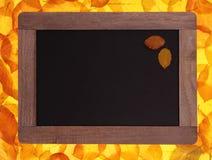 白垩从古色古香的木头的书写板在黄色树离开 免版税图库摄影