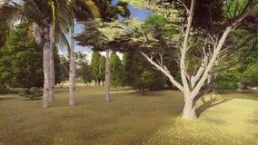 白天的镇静绿色森林 免版税库存照片