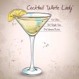 白夫人Cocktail 向量例证