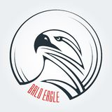 白头鹰,雕,食肉动物 E 力量和决心的标志 向量例证