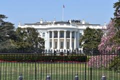 白宫的特写镜头在华盛顿D C 在美国 库存图片