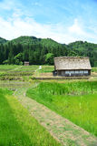 白川町种田 图库摄影