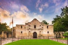 白杨在得克萨斯 免版税图库摄影