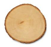 白杨木交叉高分辨率部分结构树 库存照片