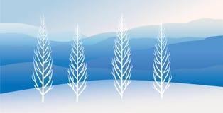 白杨树在冬天 免版税库存照片