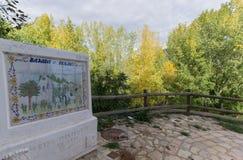 白杨树森林安娜巴伦西亚西班牙村庄树木丛生的区域 免版税图库摄影