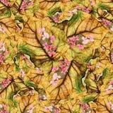 白杨树wi巨大的叶子无缝的背景样式纹理  库存图片