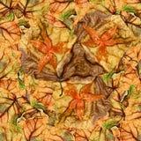 白杨树wi巨大的叶子无缝的背景样式纹理  免版税库存图片