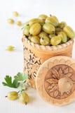白桦树皮容器用黄色鹅莓 免版税库存照片