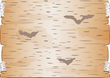 白桦树皮片断扭转了并且塞书信的空白裂缝 库存图片