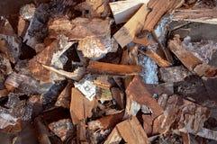 白桦树皮 免版税库存照片