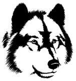 黑白油漆凹道狼例证 免版税图库摄影