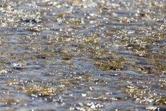 白浪背景在河的 免版税库存照片