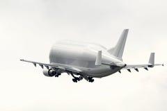 白海豚空中客车300-600ST Supertransporter F-GSTF起飞 免版税图库摄影