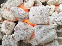 白热木炭 免版税库存图片