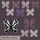 黑白照片和色的蝴蝶的汇集 库存图片