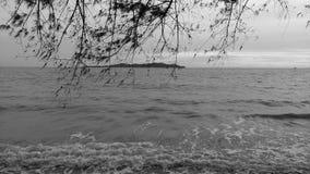 黑白照片海 库存照片