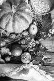 黑白照片秋天菜和坚果 图库摄影