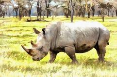 白犀牛白犀属simum五颜六色的绘画 免版税库存照片