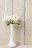 白玫瑰白色花瓶白色墙壁 图库摄影
