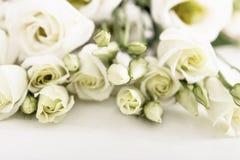 白玫瑰花束在白色木桌上的 库存图片