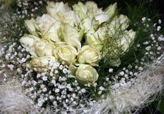 白玫瑰 免版税库存图片