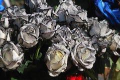 黑白玫瑰 免版税库存照片