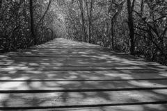 黑白的木桥 免版税图库摄影