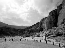 黑白的沙漠 库存图片