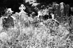 黑白的老爱尔兰坟园 免版税图库摄影