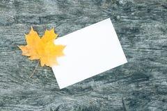 白皮书和一片枫叶板料在老木桌上 美好的葡萄酒样式-你好秋天 免版税图库摄影