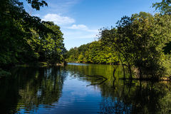 白矾小河在中央俄亥俄 免版税库存图片