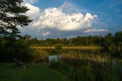白矾小河的鱼池在中央俄亥俄 库存图片