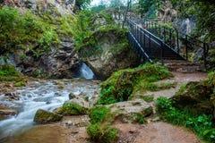 白种人矿泉水区域美丽的景色  图库摄影