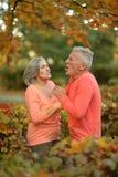 白种人长辈夫妇 库存图片